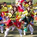 第16回ござれGO-SHU!_034(Photo by:ザ・よさこい祭り実行委員)
